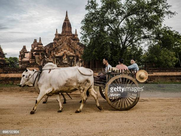 Ox cart in Bagan Myanmar