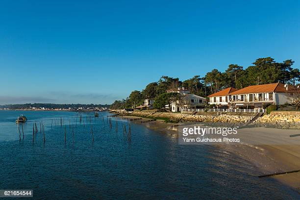 oyster farming,les jacquets, lege cap ferret, bay of arcachon, gironde, france - aquitaine stock photos and pictures