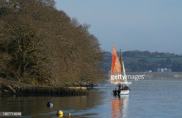 Oyster fisherman Jonathan Bailey works the River Fal oyster beds under sail on March 17, 2021 in Mylor, Falmouth, United Kingdom. The River Fal...