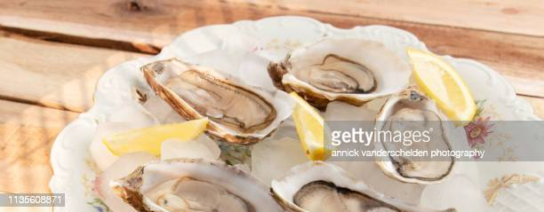 oysters and lemon - 亜鉛 ストックフォトと画像