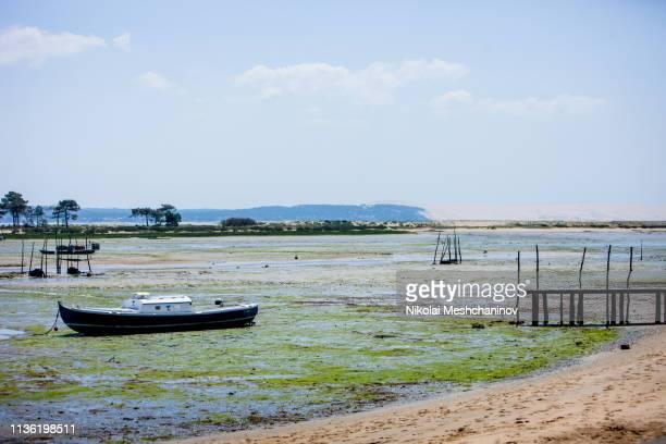 oysters farms of arcachon bay, cap ferret, france - cap ferret photos et images de collection