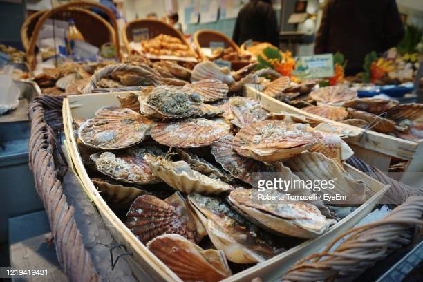 oysters in a french market - 干物 ストックフォトと画像