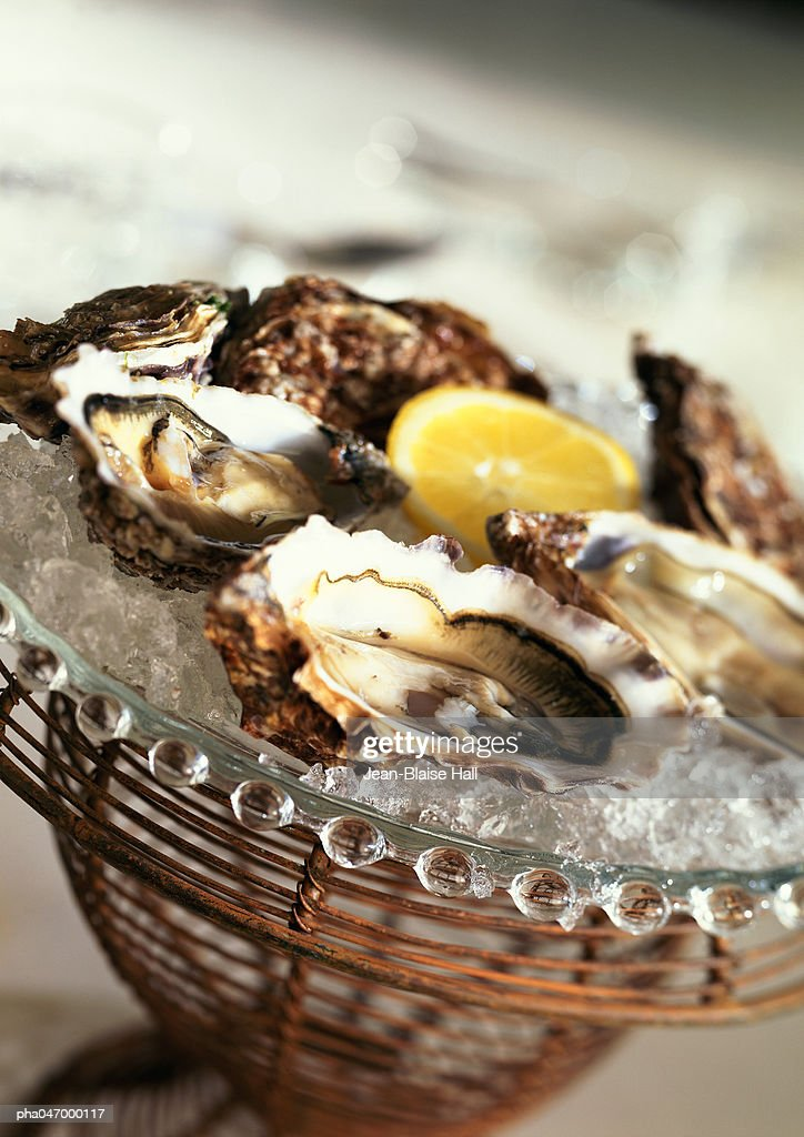 Oysters on ice, close-up : Stockfoto