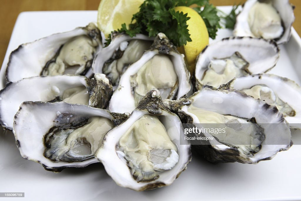 Oysters on white plate : Stock Photo