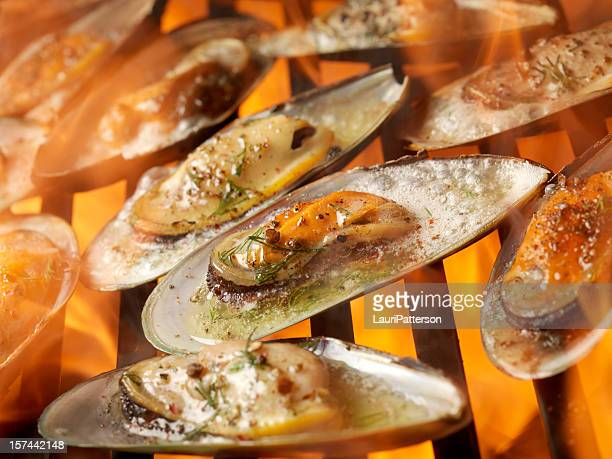 bbq oysters - clams stock photos and pictures