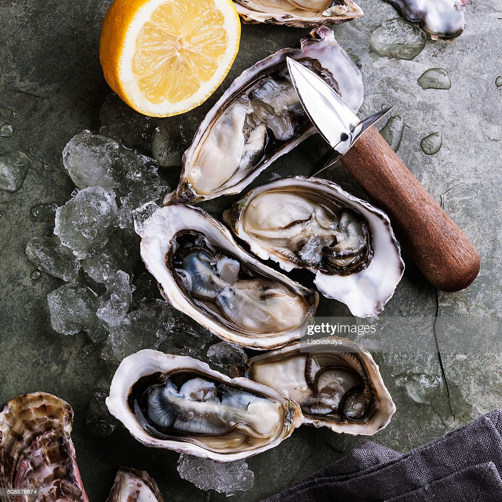 Oysters : Stock Photo
