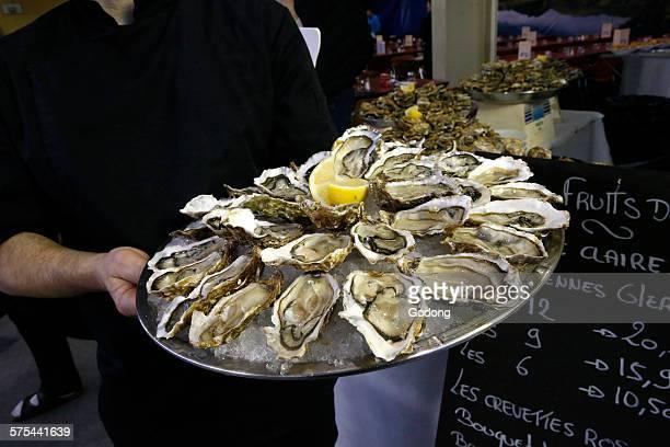 oysters - ムジェーヴ ストックフォトと画像