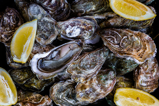 Oysters with lemon close-up - gettyimageskorea