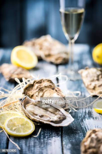 oysters with lemon - seafood stock pictures, royalty-free photos & images