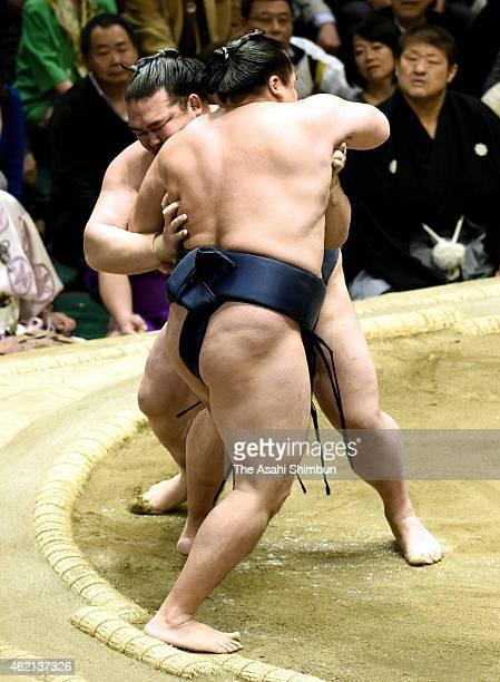 Ozeki Kisenosato pushes Mongolian yokozuna Kakuryu out of the ring to win during day fourteen of the Grand Sumo New Year Tournament at Ryogoku...