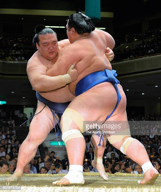 Ozeki Kotoshogiku and ozeki Kisenosato compete during day ten of the Grand Sumo Summer Tournament at the Ryogoku Kokugikan on May 17 2016 in Tokyo...