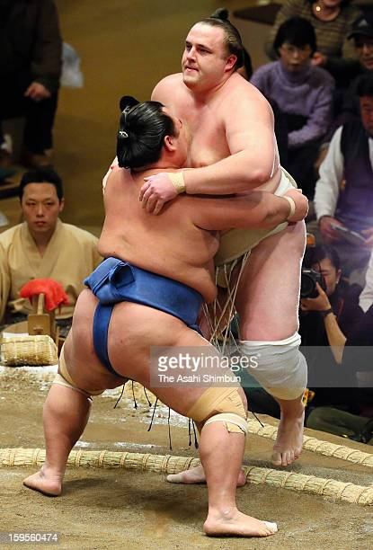 Ozeki Kotoshogiku pushes Baruto to win in day two of the Grand Sumo New Year Tournament at Ryogoku Kokugikan on January 14 2013 in Tokyo Japan