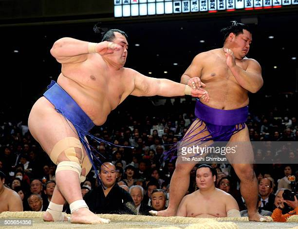 Ozeki Kotoshogiku pushes Shohozan out of the ring to win during day six of the Grand Sumo New Year Tournament at Ryogoku Kokugikan on January 15 2016...