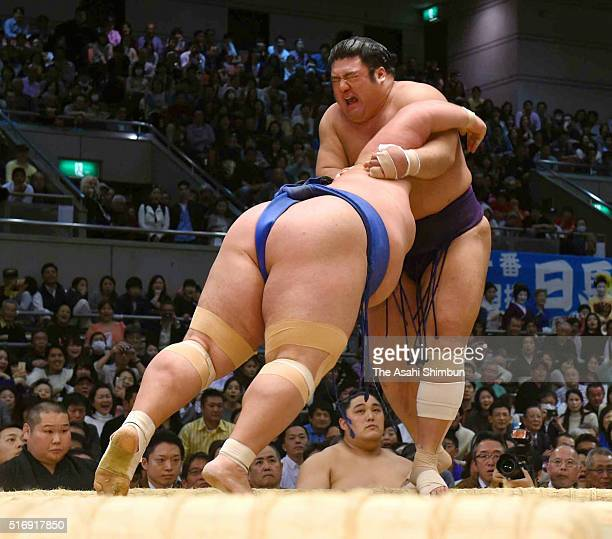 Ozeki Kotoshogiku pushes Tochiozan out of the ring to win during day eight of the Grand Sumo Spring Tournament at the Edion Arena Osaka on March 20...