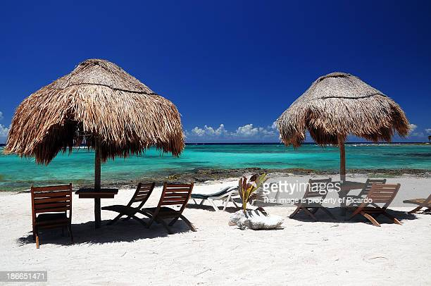 paa mul beach - mayan riviera stock photos and pictures