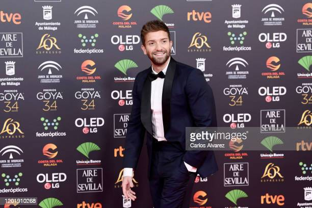 Pablo Alboran attends the Goya Cinema Awards 2020 during the 34th edition of the Goya Cinema Awards at Jose Maria Martin Carpena Sports Palace on...