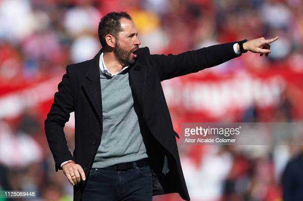 Pablo Machin of Sevilla FC looks on during the La Liga match between Sevilla FC and Levante UD at Estadio Ramon Sanchez Pizjuan on January 26 2019 in...