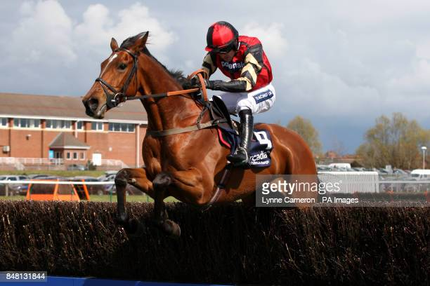 Pacha Du Polder ridden by Ruby Walsh during the Arcadia Consulting William Dickie Mary Robertson Future Champion Novices' Chase