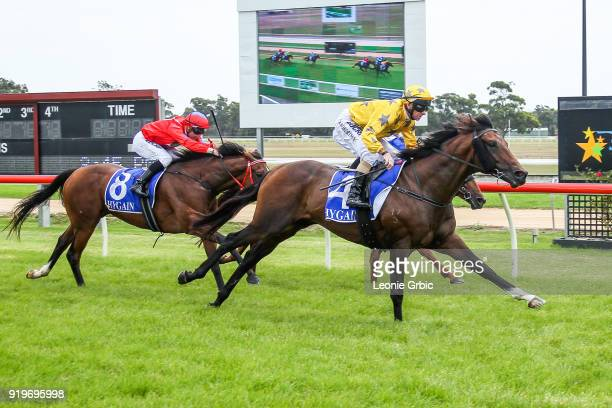 Pachino Boy ridden by Craig Robertson wins the Flaked N Fried Newborough Cup BM58 Handicap at Moe Racecourse on February 18 2018 in Moe Australia