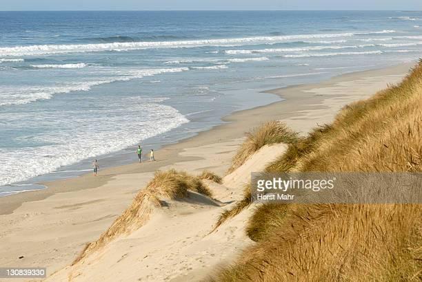 Pacific coast at Oregon Dunes near Dunes City, Oregon, USA