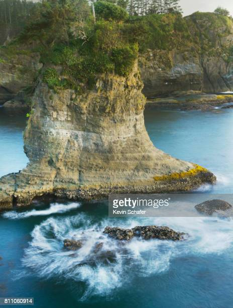 Pacific coast, Cape Flattery, Washington, NW tip of 48 states