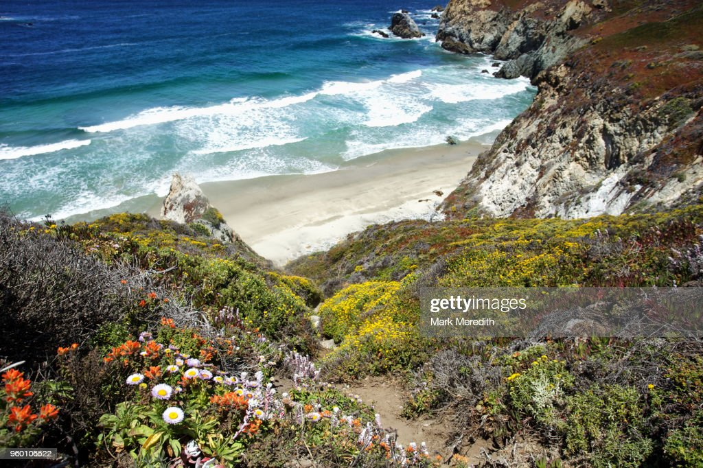 Pacific Coast Highway colour and beach : Stock-Foto
