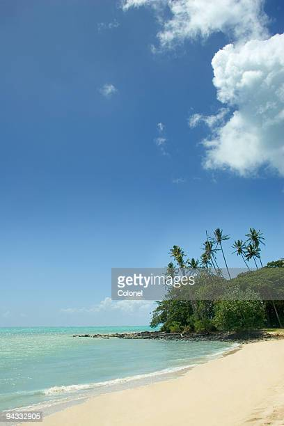 pacific island beach - samoa stock pictures, royalty-free photos & images