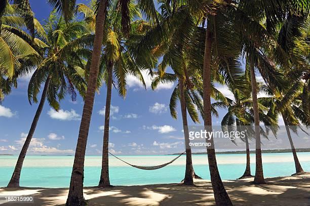 isola del pacifico amaca - isole cook foto e immagini stock