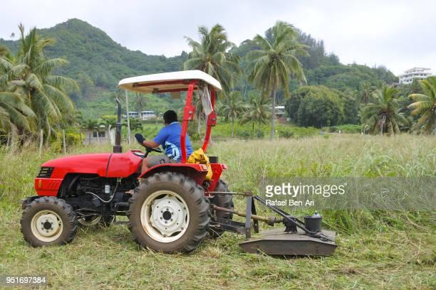 pacific islander farmer plowing a field with a tractor - rafael ben ari photos et images de collection