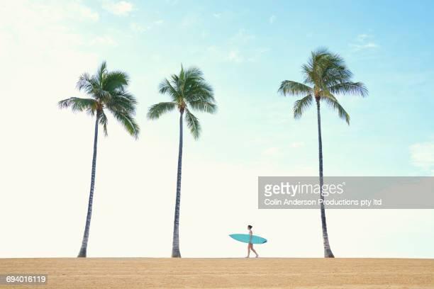 pacific islander woman carrying surfboard walking near palm tree - ホノルル ストックフォトと画像