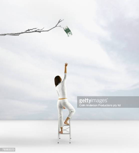 pacific islander woman reaching for dollar on tree - money tree stock photos and pictures
