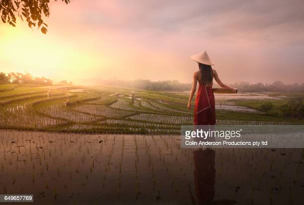 Pacific Islander woman standing in rice field