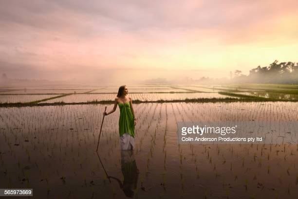 Pacific Islander woman standing in rice field under sunset sky