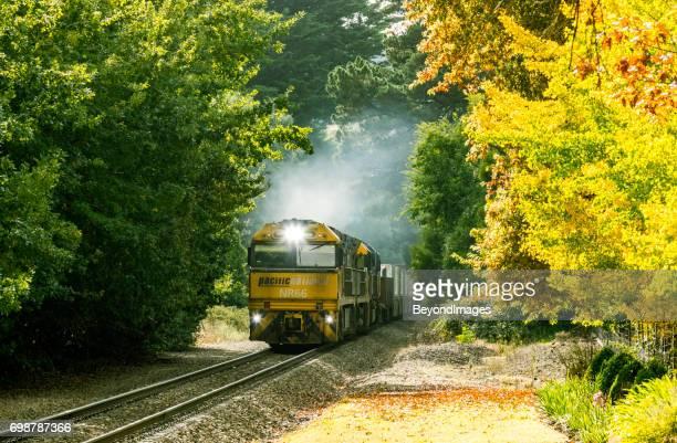 Nacional Pacífico tren de carga en colores otoñales colinas de Adelaida