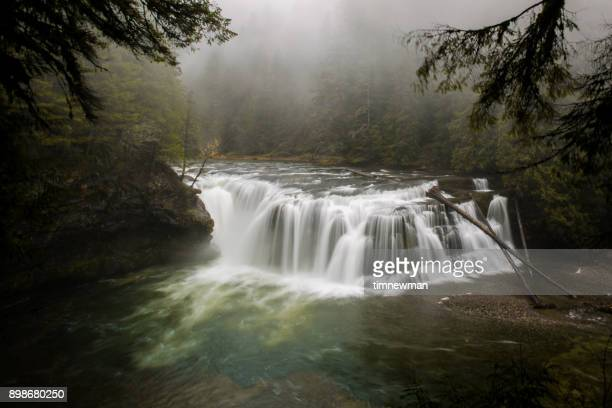 pacific northwest waterfall in the forest - pacific northwest stock pictures, royalty-free photos & images