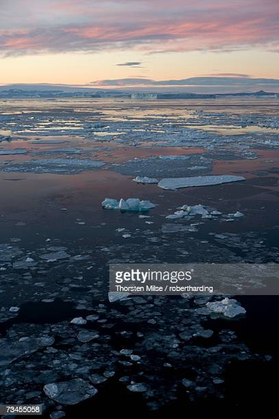 pack ice and iceberg, antarctic peninsula, weddell sea, antarctica, polar regions - oceano antartico foto e immagini stock