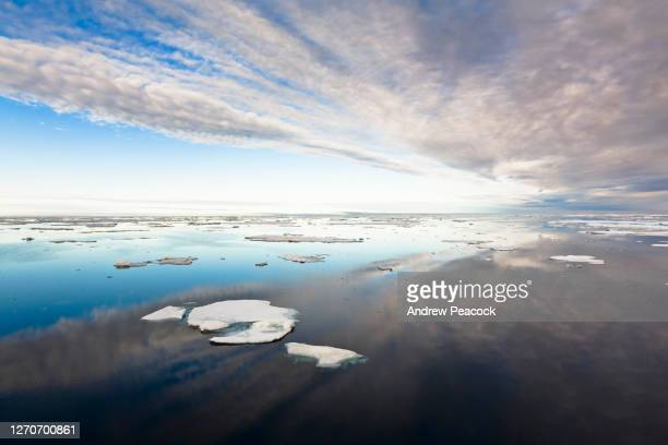 pack ice in barrow strait, qikiqtaaluk region, nunavut, canada. - pack ice stock pictures, royalty-free photos & images