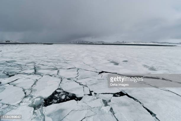 pack ice, murchinson bay, murchisonfjorden, nordaustlandet, svalbard, norway - tundra stock pictures, royalty-free photos & images