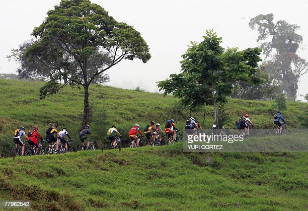 A pack of cyclists race uphill during the last stage of the Route of Conquerors mountain bike race 17 November 2007 in Playa Bonita Limon province...