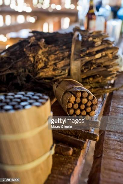 packages of hand made cuban cigars with tobacco leaves on workbench, vinales, cuba - pinar del rio stock photos and pictures