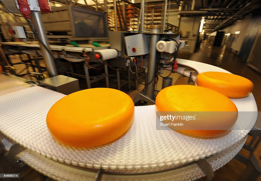 Packed cheese rolls off the production line at the cheese dairy Nordmilch on February 5, 2009 in Nordheckstedt, near Flensburg, Germany.
