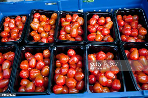 Packs of cherry tomatoes hand picked The Cornerways tomato nursery is the largest greenhouse in the UK It is attached to the British Sugar factory in...