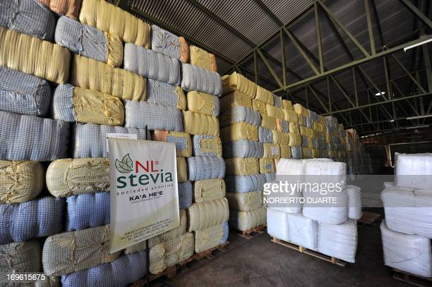 Packs of dried leaves from stevia plants known as 'sweet herb' or 'ka´a he´e' in the native Guarani language are seen stacked in a wharehouse to...