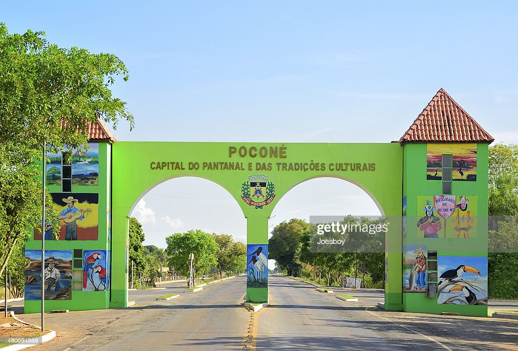 Pacone Gateway To Pantanal : Stock Photo