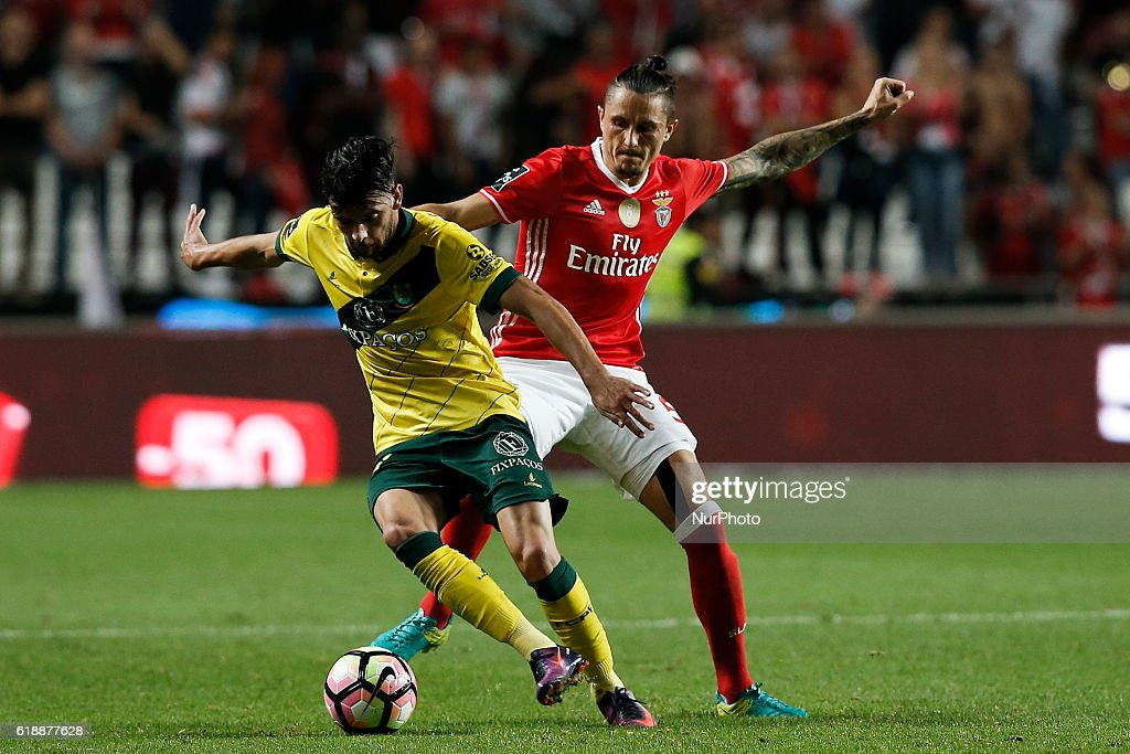 Pacos Ferreira's forward Ivo Rodrigues (L) vies for the ball with Benfica's midfielder Ljubomir Fejsa (R) during Premier League 2016/17 match between SL Benfica vs CF Pacos Ferreira, in Lisbon, on October 28, 2016.