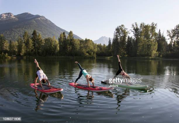 paddle board yoga - paddleboard stock photos and pictures