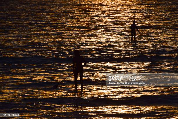 Paddle Boarders on the sunset beach in Fujisawa city in Kanagawa prefecture