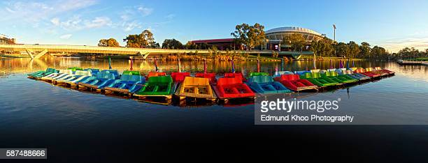 Paddle Boats on the Torrens River in Adelaide