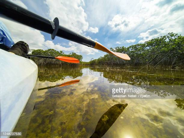 paddle swamp reflecting against sky - everglades national park stock pictures, royalty-free photos & images