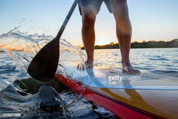 paddle-boarding detail - gulf coast states stock pictures, royalty-free photos & images